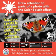 March 21 2017 at Color Splash Effect, Teaching Technology, Photo Black, How To Apply, Black And White, Instagram Posts, March 21, Homeschool, Twitter