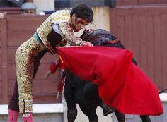 Solo hay una cosa que no me gusta de la cultura hispanica y eso es, como matan a muchos toros.