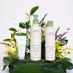 Gift the gift of calm with this Aveda Shampure gift set, the perfect gift for the beauty lover in your life.