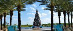 Caribbean Holidays: Christmas in Grand Cayman - Beach Vacations, Cayman Islands, Grand Cayman, Holiday Travel
