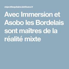 Avec Immersion et Asobo les Bordelais sont maîtres de la réalité mixte