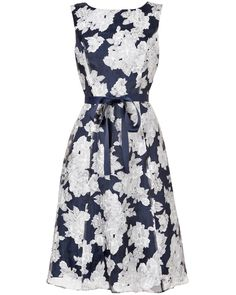 Occasion Dresses | Blue Norma Floral Burnout Dress | Phase Eight