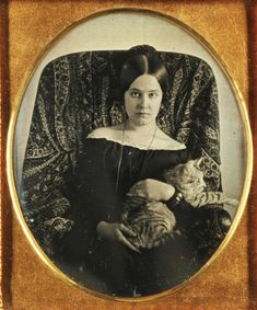daguerreotype ca. 1850s - young woman with a cat