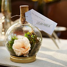 DIY Terrarium Favor and Place Holder. It includes supply list and complete tutorial for the terrarium and the fabric flower. Terrarium Diy, Terrarium Wedding, Terrarium Centerpiece, Small Terrarium, Glass Terrarium, Centerpiece Ideas, Diy Wedding Favors, Wedding Decorations, Party Favors