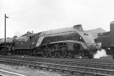 Steam Trains Uk, Steam Railway, North East England, Steam Engine, Steam Locomotive, Diesel, London, Sheds, A4