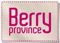 Le nouveau site web Berry Province est en ligne ! http://www.berryprovince.com/ #responsive #etourisme