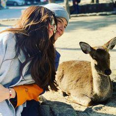 Daniel Padilla, Kathryn Bernardo, Jadine, Love S, Japan Travel, Couple Photos, Animals, Blue Hearts, Barcelona