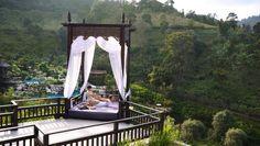 thai goldfinger wellness massage sorø victoria