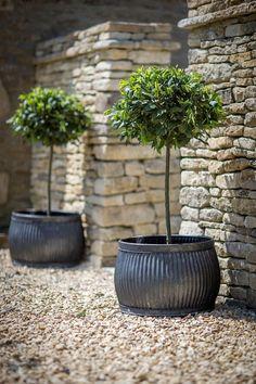 Ideas Large Outdoor Pots For Large Outdoor Pots Fibre C Patio And Planters New Gas 15 Large Outdoor Flower Pots Near Me Large Outdoor Planters, Large Garden Pots, Patio Planters, Outdoor Pots, Outdoor Gardens, Planter Pots, Planter Ideas, Large Pots, Cedar Planters