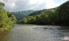 Obr. 11 Ťažbou nedotknutý riečny ekosystém Váhu o pár km vyššie (medzi Krpeľanmi a Nolčovom) s prirodzeným, geologicky predisponovaným striedaním tíšinových a prúdivých úsekov (pool-and-riffle pattern).
