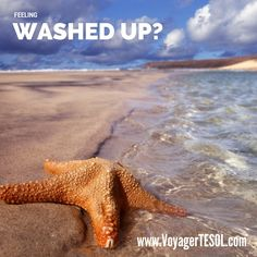Washed Up?we've got a new career just for you.