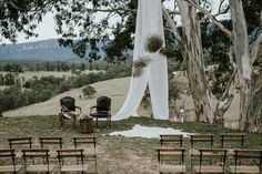 The new country style: a gathering in the gums - WedShed