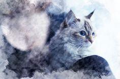 John Stevenson - Cat and girl at the window