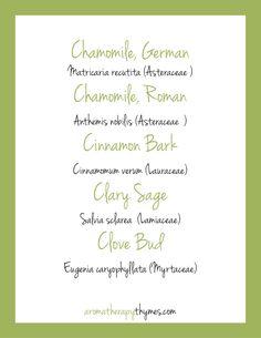 Chamomile-Clove Bud
