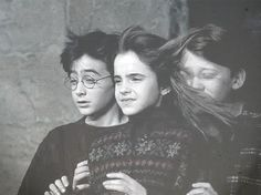 """""""Ron, stop smelling my hair"""" """"But Hermione, your hair smells great..."""""""