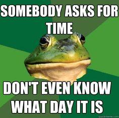 funny-foul-bachelor-frog-meme-college
