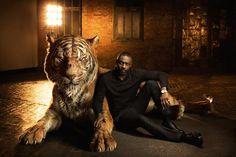 Le Livre de la Jungle – Les acteurs posent avec les animaux dont ils sont la voix