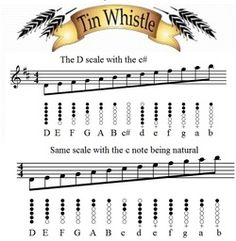 the D whistle scale