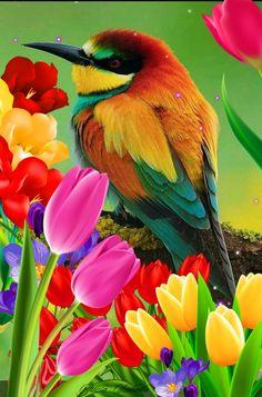 Jégmadár és színes tulipánok