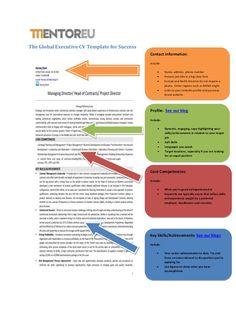 Beata staszkow beatastaszkow on pinterest the global executive cv template for career success yelopaper Choice Image