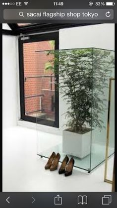 @SACAI Flagship Store in Tokyo  Feature Plants on the Glass box