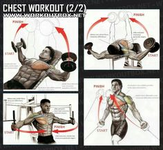 Chest Workout Part 2 - Healthy Fitness Training Routine Arms Abs - Yeah We Workout ! Chest Workout Part 2 - Healthy Fitness Training Routine Arms Abs - Yeah We Workout ! Fitness Workouts, Fun Workouts, Bike Workouts, Swimming Workouts, Swimming Tips, Cycling Workout, Chest Workout For Mass, Chest Workouts, Chest Exercises