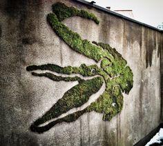 Moss Crocodile by MossRoom, Copenhagen, Denmark Graffiti Wall Art, Street Art Graffiti, Moss Grafitti, Graffiti En Mousse, Art Mural En Plein Air, Outdoor Wall Art, Best Street Art, Land Art, Art Plastique