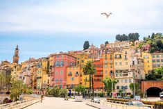 In the southeast of France, yacht-strewn shores, cliffside towns, and sleepy fishing villages simmer underneath the Mediterranean sun.