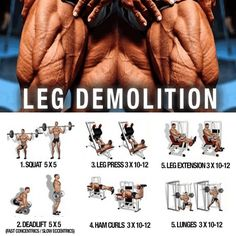 Leg Demolition Training ! Healthy Fitness Workout Plan