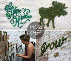 new Ideas for wall graffiti art ideas moss paint Cool Diy Projects, Garden Projects, Fair Projects, Moss Grafitti, Moss Paint, Growing Moss, Fleur Design, Graffiti Designs, Graffiti Painting