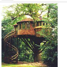Treehouses   treehouses   TreeHouses & Camping