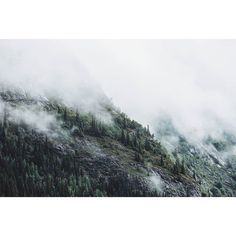 "Travel Feels ""Hill Station Edition misty peaks - ii"" . #nature_brilliance#EarthVisuals#artofvisuals#welivetoexplore#natureaddict#naturediversity#ourplanetdaily#earth_deluxe#instanaturelover#nature_prefection#allnatureshots#unlimitedplanet#getoutside#getoutstayout#exploremore#theglobewanderer#letsgosomewhere#campvibes#optoutside#earthfocus#rei1440project#liveoutdoors#travelstoke#canonphotos#canoneos#canonrebel#canonphotographer#canonphotography#focalmarked"