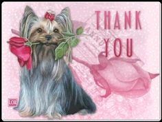 you are welcome - Bing Bilder Thank You Card Sayings, Thank You Images, Thank You Quotes, Thank You Cards, Welcome Quotes, Sympathy Messages, Pray Continually, Valentine Images, Thankful Heart