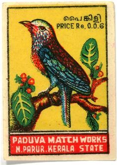 Love the Joseph Frank-like colours and plant life and the effort that went into this inexpert bird. Gorgeous, folky.
