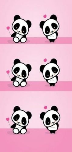 Baby panda background for android Panda Wallpaper Iphone, Cute Panda Wallpaper, Panda Wallpapers, Cute Wallpaper Backgrounds, Cartoon Wallpaper, Cute Wallpapers, Vintage Wallpapers, Heart Wallpaper, Panda Background