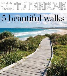 Coffs Harbour, NSW, Australia has 5 stunning walks. Coast Australia, Visit Australia, Australia Travel, Beautiful Places To Visit, Beautiful Beaches, Places To Travel, Places To See, Travel Destinations, Australian Road Trip