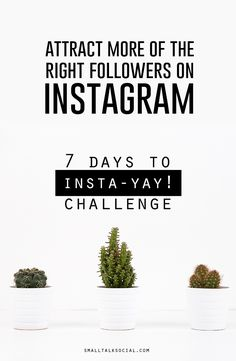 """Ready to take your Instagram account from """"womp womp"""" to """"HELL YEA""""?! Sign up for the FREE 7 Day Instagram challenge + discover the best ways to set up your account PLUS strategies to manage it more effectively.   If you're ready to start attracting more customers + making more sales, accept the 7-Days to Insta-Yay! Challenge + let's do this..."""
