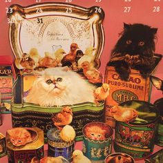 Just a few days to claim our last Toilet Paper calendars. Who knows what next year holds but it might as well be #kitsch. @toiletpapermagazineofficial  #toiletpapermagazine #calendar #cats #kitten #surreal