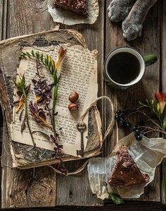 old book with rustic look