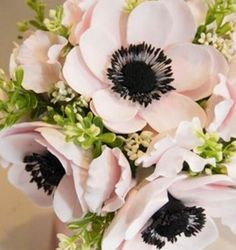 Blush Anemone bouquet black brushstroke centers are modern and crisp!