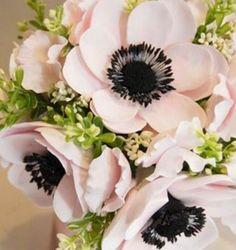 Bush Anemone Bouquet. black brushstroke centers are modern and crisp!