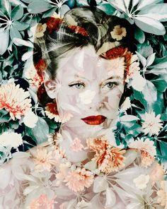 Valerie Belin:  Calendula (Marigold)