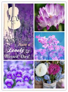 From my precious dear friend Teresa!!!
