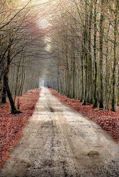 Nice Pleasant Road