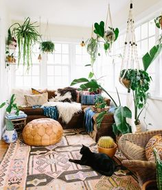 These lush jungalows are nailing the indoor plant home decor trend.