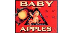 Baby Brand Apples 1930 Seattle Washington Vintage Poster Print Retro Style Fruit Crate Label Art US Free US Post Low EU Post by VintagePosterPrints on Etsy