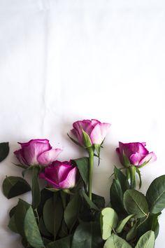 i love every season - (via Bolo de Pistácio e Água de Rosas | Pistachio...