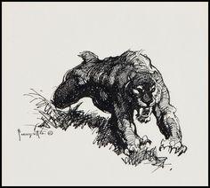 Saber Tooth Tiger sketch by Frank Frazetta, 1970's