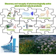 Discovery and resupply of pharmacologically active plant-derived natural products: A review. https://www.ncbi.nlm.nih.gov/pubmed/26281720  http://healthandscienceportal.blogspot.co.at/p/discovery-and-resupply-of.html