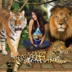 Kimi template customized by jameljamelaslemislemslimani. Original created by Cool Photos, My Photos, Jungle Cat, Photo Effects, Tv On The Radio, Documentaries, Photo Editing, This Is Us, Places To Visit